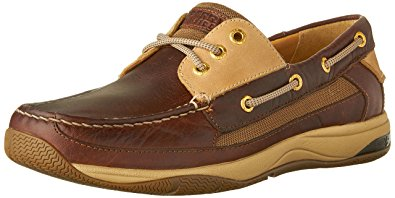 sperry brown model